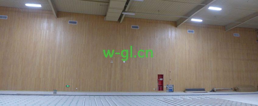 北京再添羽毛球馆应用案例——WSA101灯具